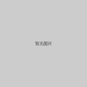 镇江御珑湖C1户型下叠179㎡户型解析